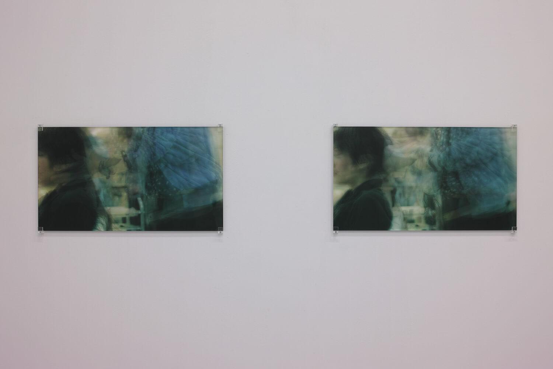 After Image_18<br>silk screen on acrylic board, 22 x 39 x 0.8 cm, 2017