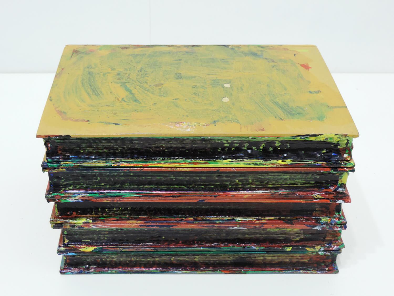 <b>Untitled</b><br>Acrylic on books 22.4 × 15.5 × 13.2 cm 2004