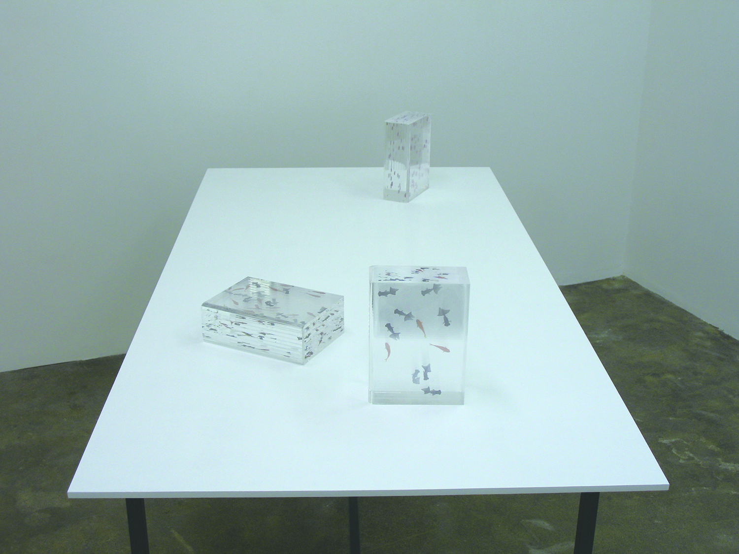 Installation View - Dictionary-born in April and gold fishes  acrylic and transfer seal  16.5 x 23 x 8 cm each  2008 each