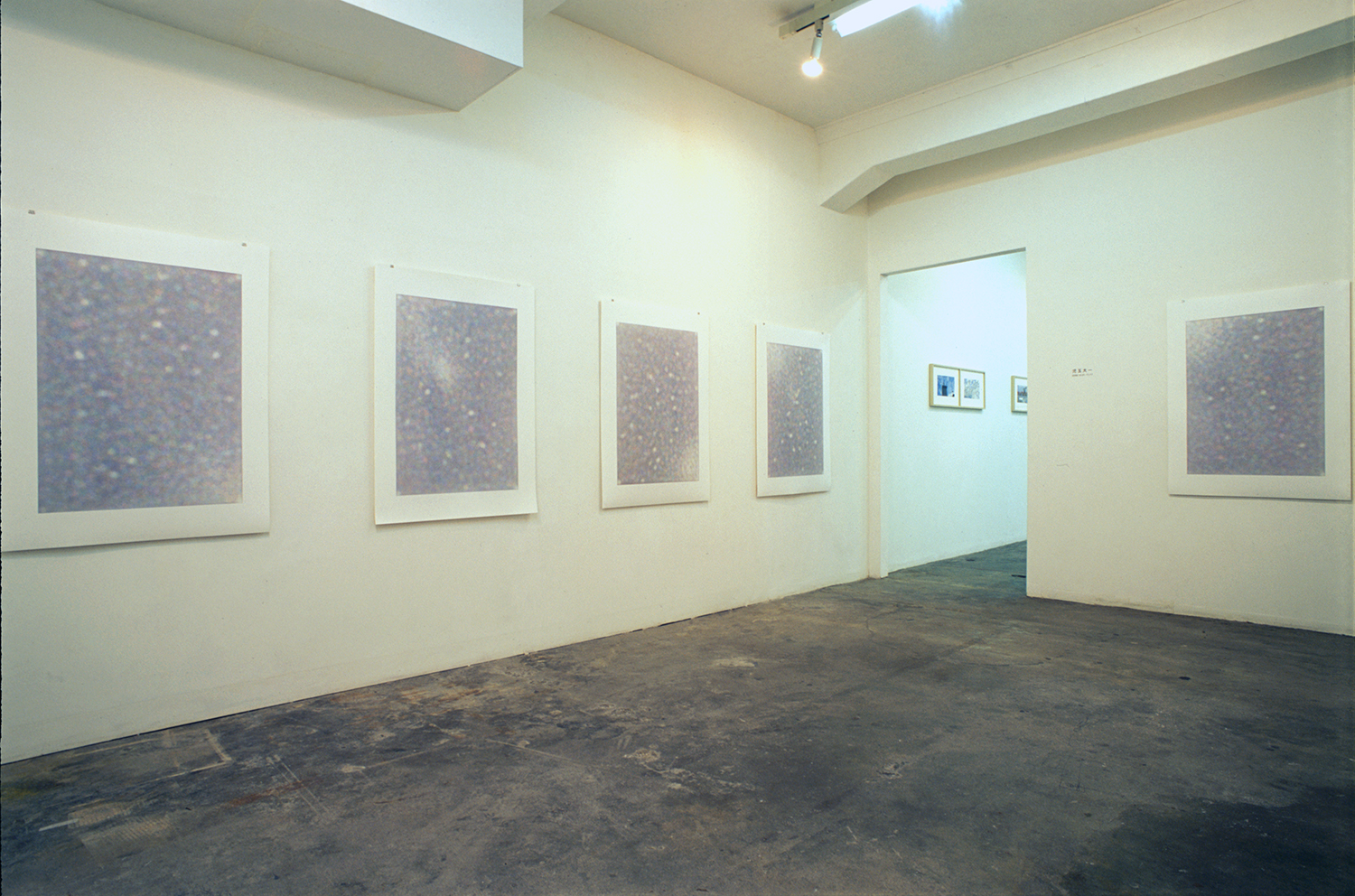 Installation view: Accumulation series|Acrylic on YUPO paper|image: 860 x 600mm, paper: 1094 x 788 mm|2006 each