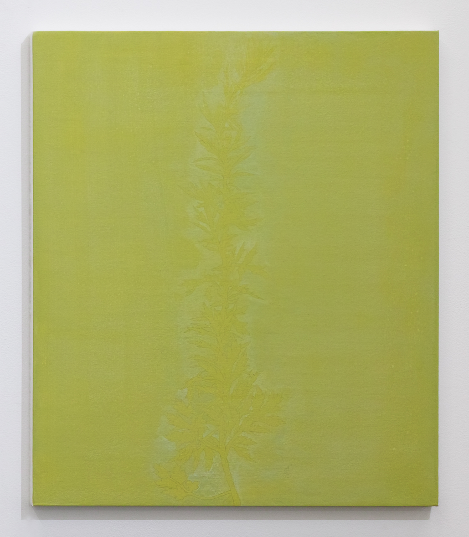 三浦洋子|YOKO MIURA<br>yellow green 3|acrylic, cotton, pigment and panel|53 x 45.5 cm|2019
