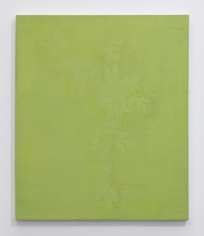 三浦洋子|YOKO MIURA<br>yellow green 2|acrylic, cotton, pigment and panel|53 x 45.5 cm|2019