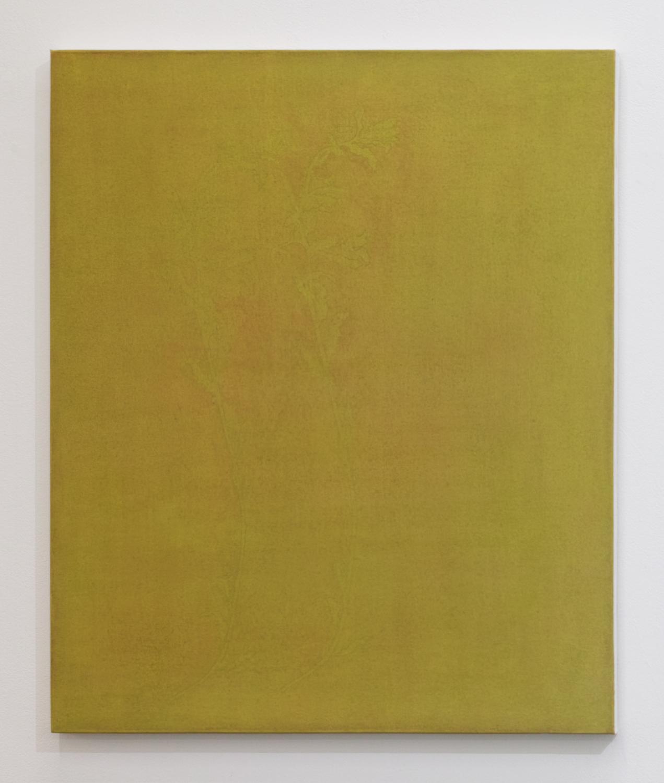 三浦洋子|YOKO MIURA<br>yellow green 1|acrylic, cotton, pigment and panel|53 x 45.5 cm|2019