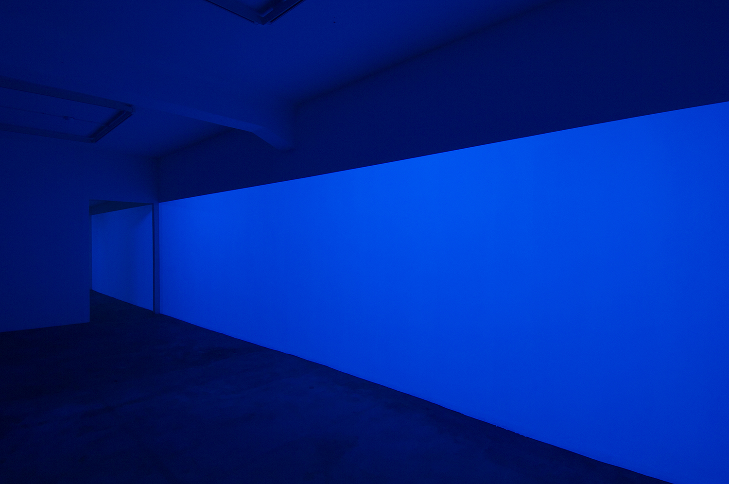 light work 2007#01<br>acrylic gauche, black light, 227 × 1447 cm, 2007