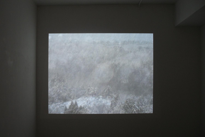 雪 2|snow 2(映像)<br>projected image size: variety 2010