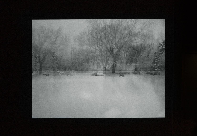 <b>シロイ夜|white night</b> プロジェクター、メディアプレイヤー|projector, media player 2014<br><font size=1.5>「湖岸にたてば、咳き込みそうなほど降る雪。足先が凍るのに時間はかからない。 暫くたったのち雪はゆっくりと速度を緩め、私の周りは静かにとまった。<br>眼の前の湖面は黒く光る金属と化し、自分の呼吸の音だけがアタマの中で響く。 奇妙な光景。距離はもちろん時間の感覚がつかめない。<br>昼も夜もアチラ側をみた。そんな気がしたのは、気のせいだろうか。「シロイ夜」ノートより」