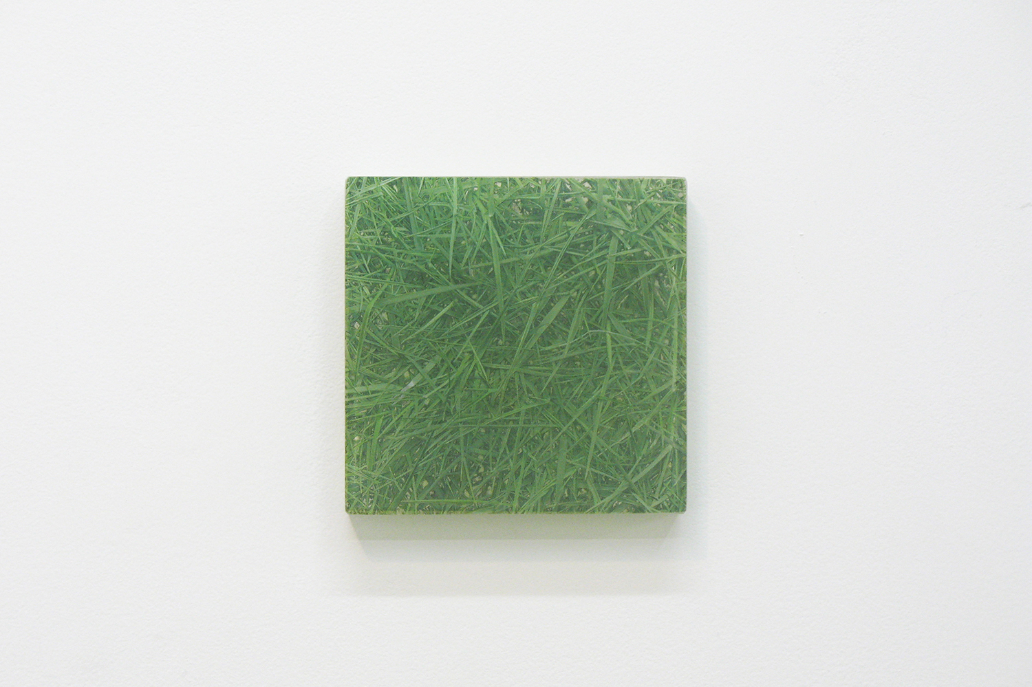 Photo painting [叢 grass 06-31.5],  oil on polyester resin panel and mixed media, 14 × 14 cm, 2006