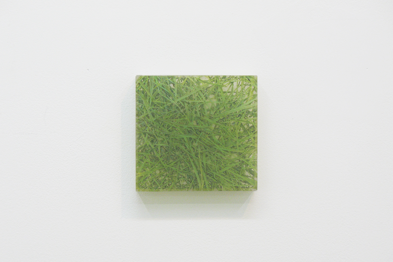 Photo painting [叢 grass 06-8],  oil on polyester resin panel and mixed media, 11.2 × 11.8 cm, 2006