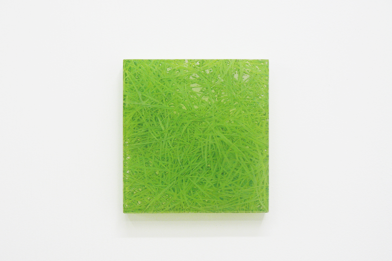 Photo painting [叢 grass 06-26],  oil on polyester resin panel and mixed media, 16 × 15cm, 2006