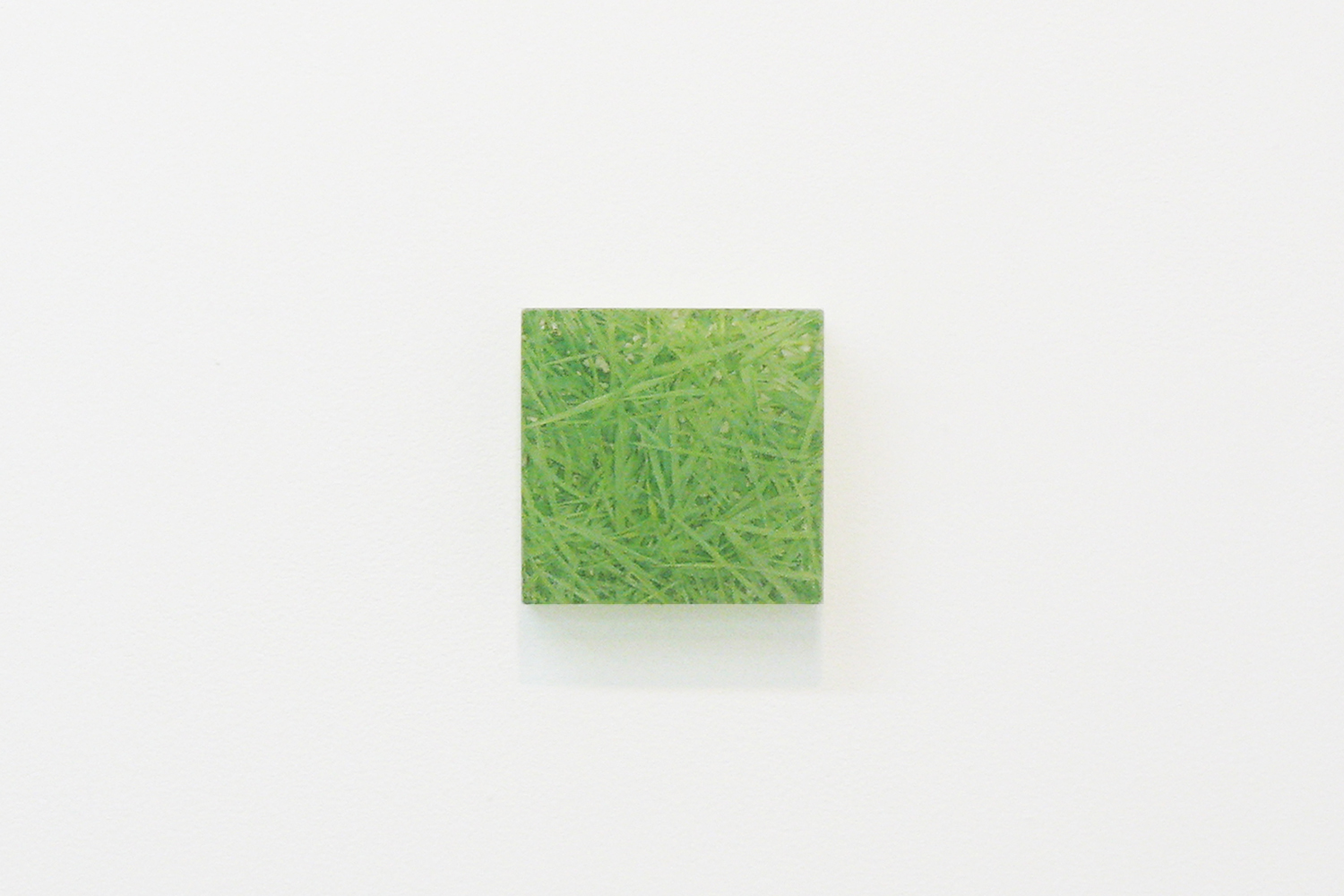 Photo painting [叢 grass 06-9.26],  oil on polyester resin panel and mixed media, 9.9 x 10cm, 2006