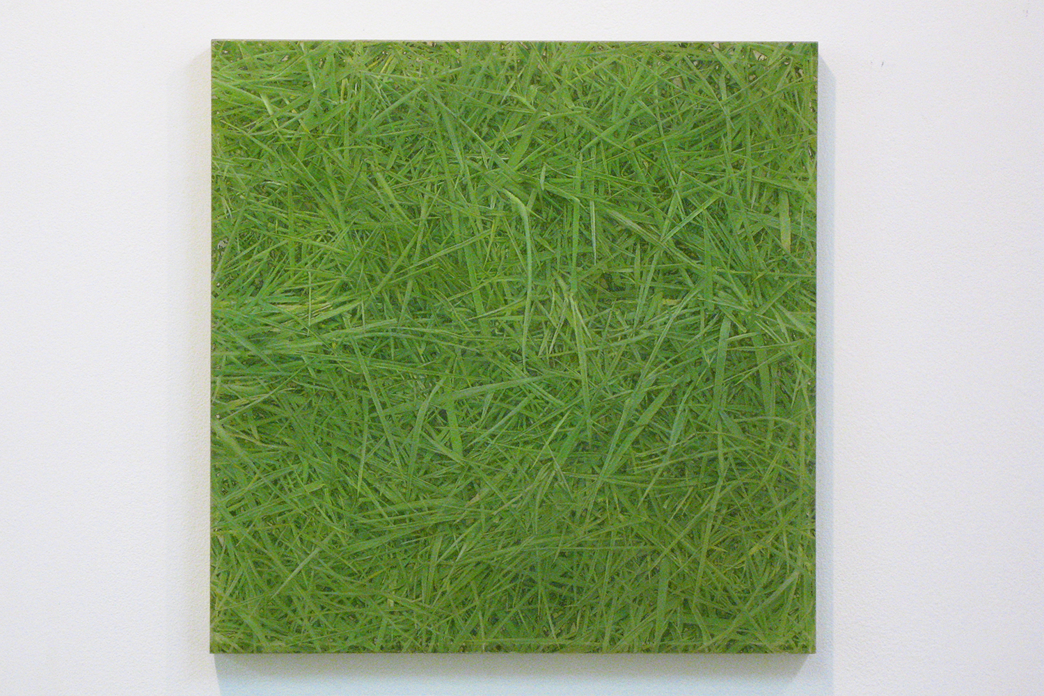 Photo painting-bush 叢|oil on polyester resin panel and mixed media|42.5 x 42.5 cm|2008