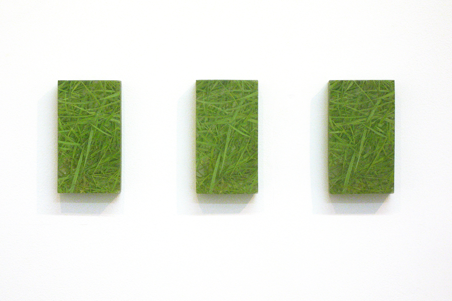 Photo painting-bush 叢|oil on polyester resin panel and mixed media|14.5 x 8 x 3 cm|2008 each