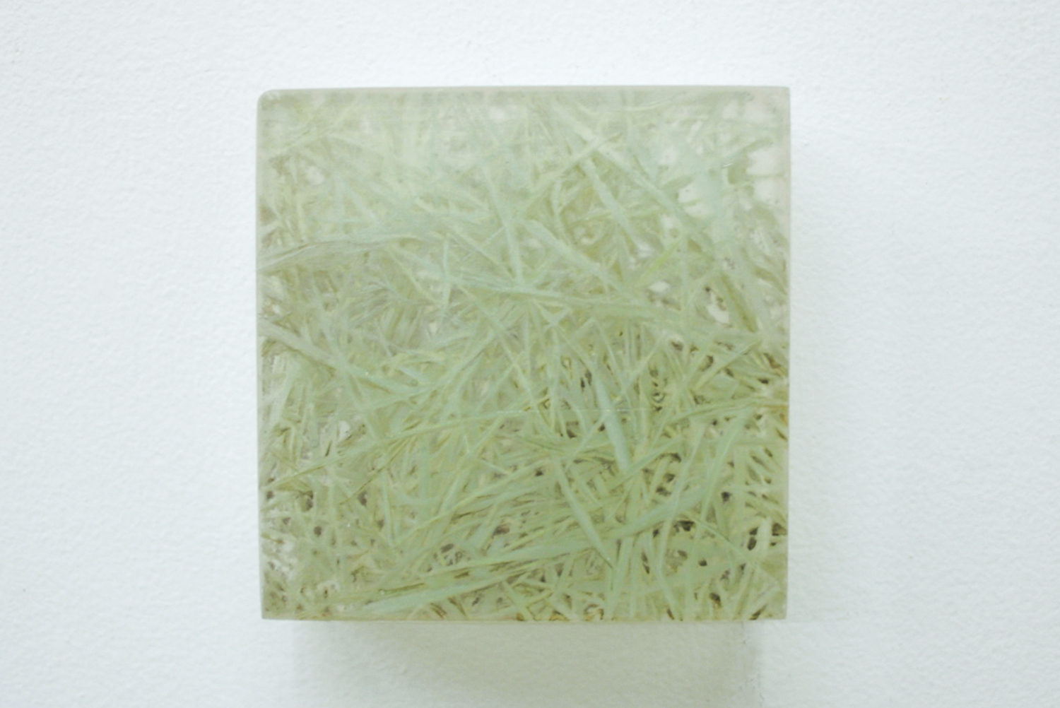 Photo-painting 草上のかおり-1|Scent on the grass-1 |7.5 x 7.5 x 3 cm|Oil on FRP, mixed media| 2009