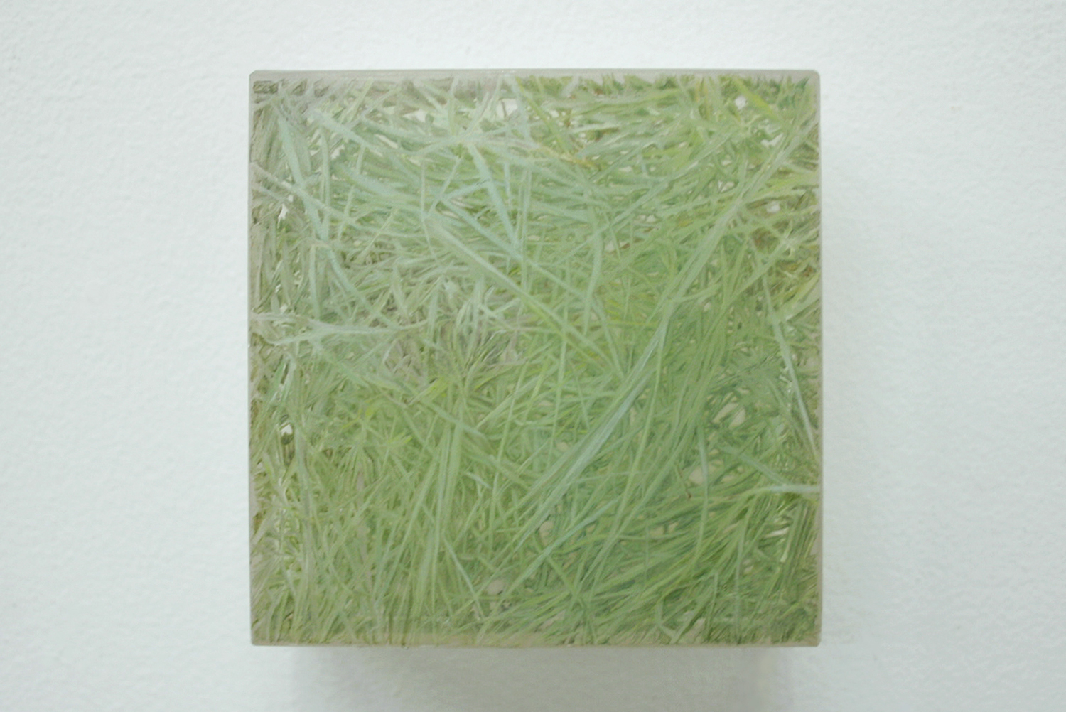 Photo-painting 草上のかおり-8|Scent on the grass-8 |7.5 x 7.5 x 3 cm|Oil on FRP, mixed media| 2009