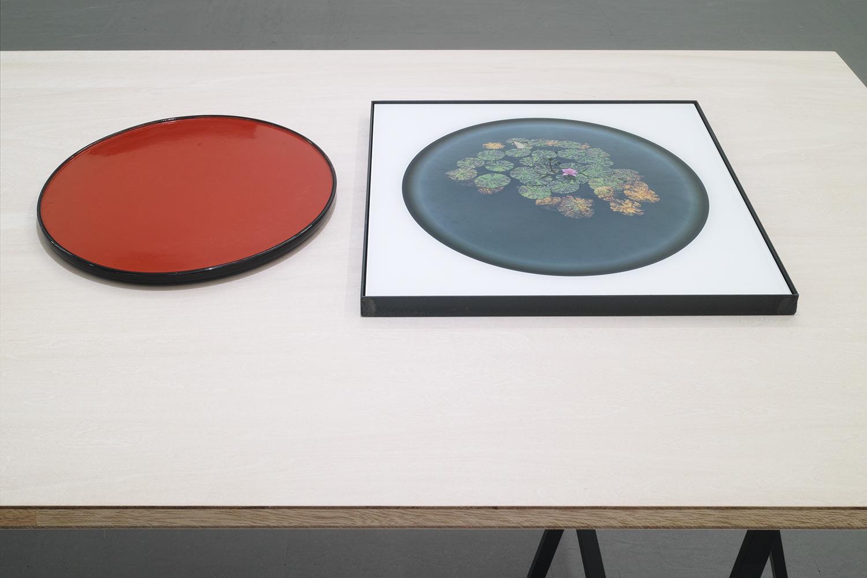 盆花/Bon flower|Lambda silver halide print, acrylic plate, iron, tray|photo: 450 x 440 x 25mm, tray:355 x 355 x 20 mm|2019<br><br>円形に写るカメラを使っている。正確に言うと円形に写るレンズを使っている。写真をあとから切り取っているのではない。<br>相当数のレンズを試したが、このレンズは周辺描写が最も魅力的だ。印画すると円周部分が凹んだように感じる。<br>まるで盆上に咲く蓮のようで、単純に「盆花」と命名した。同じ大きさの盆を持っていて、これと並べてかたちをダブらせることにした。