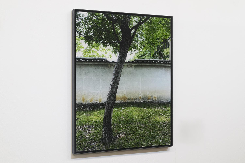 瓦の眺め/View of roof tile|Lambda silversalt print, acrylic board, iron|515 x 390 x 25 mm|2020