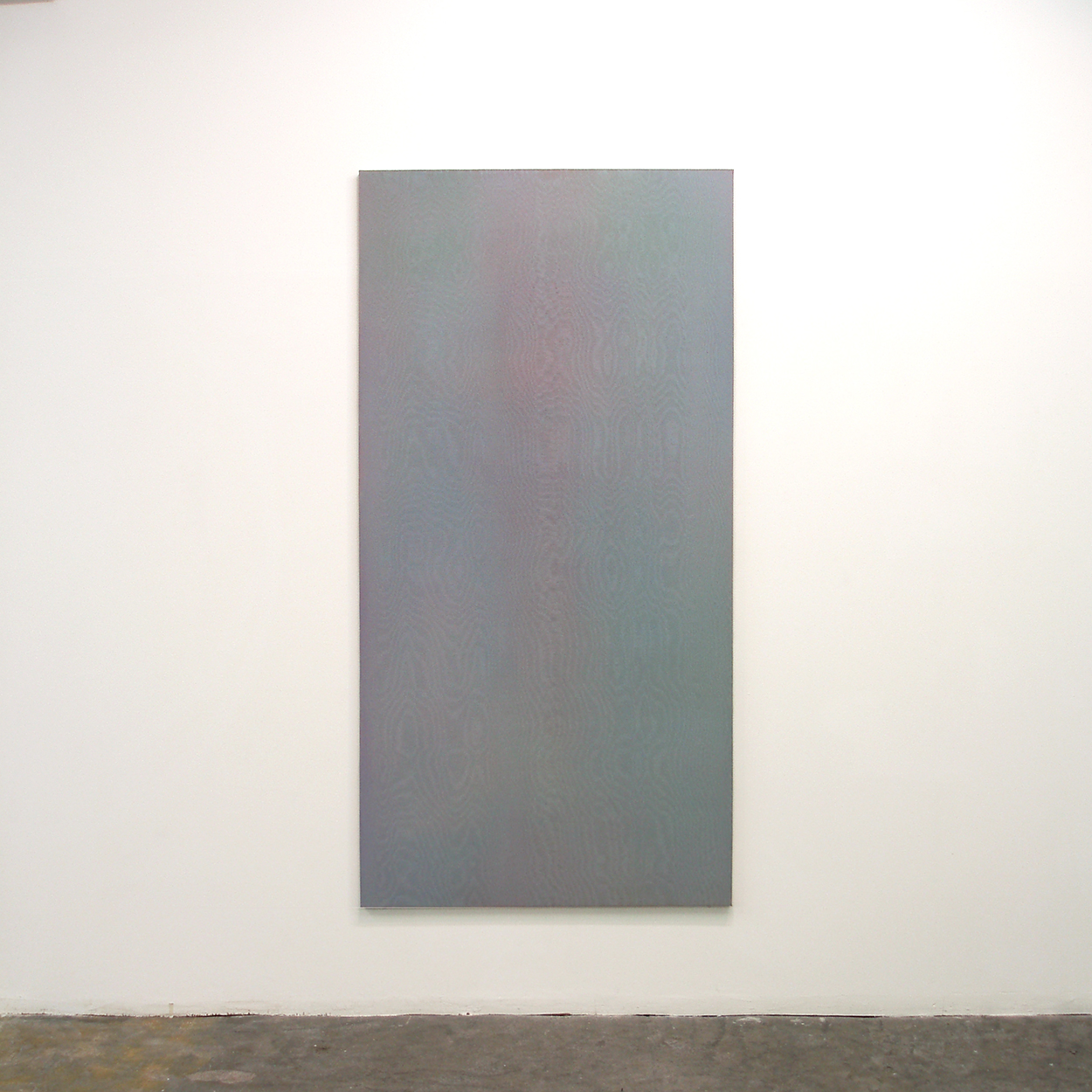Floating shadow #1|浮影 #1|Panel, acrylic, polyester organza|182 x 910 mm|2007