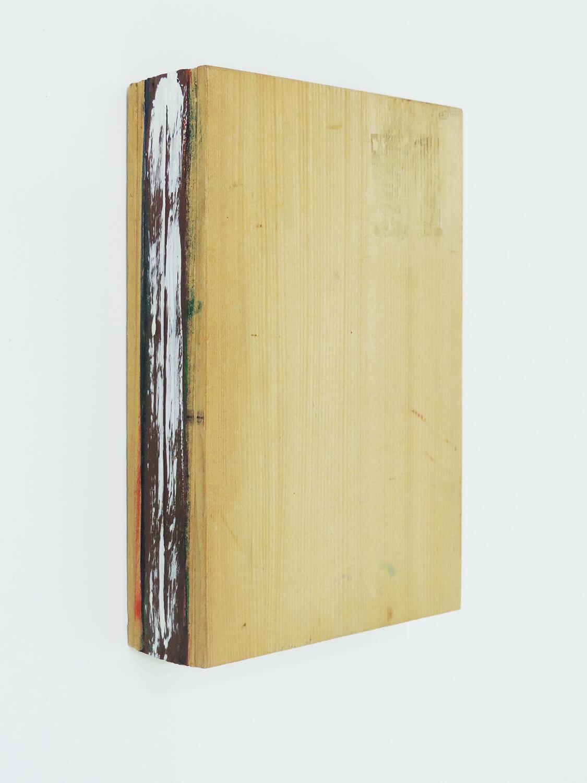 <b>Trusim / あたりまえのこと</b><br>Acrylic on wood 23 x 15 x 5 cm 1990