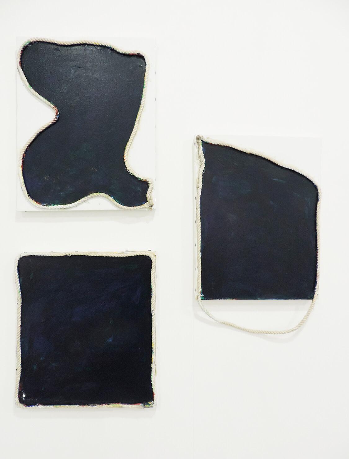 <b>Untitled</b><br>Acrylic, rope on canvas 35 x 27.5 x 2.7 cm(左上)35.3 x 27.5 x 2.7 cm(左下)41 x 27.5 x 2.7 cm(右) 2010