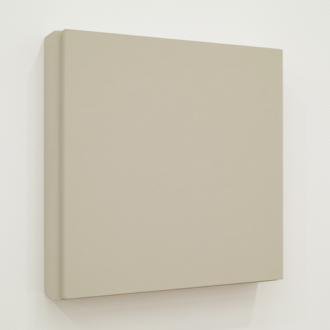TS1013|Gesso on panel |20 x 20 cm|2012