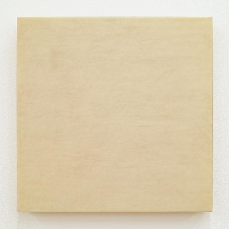 TS0114|Resin|31 x 31 cm|2011