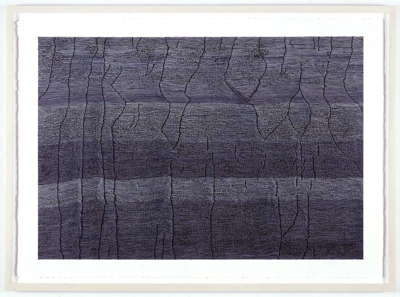 -arcadia- acrylic on paper 75 x 105 cm 2002